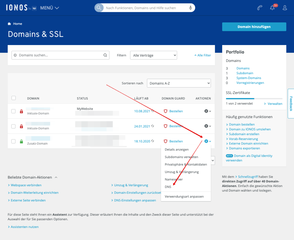 Screenshot: Das Domains & SSL